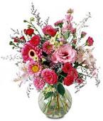 USA Flower USA Florist  USA  Flowers shop USA flower delivery online  ,:The FTD?Splendid Day