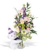 USA Flower USA Florist  USA  Flowers shop USA flower delivery online  ,:Teleflora's Party Bear
