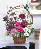 USA Flower USA Florist  USA  Flowers shop USA flower delivery online  ,:Birthday Butterflies