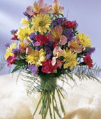 USA Flower USA Florist  USA  Flowers shop USA flower delivery online  ,:The FTD?Festive Wishes