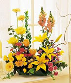USA Flower USA Florist  USA  Flowers shop USA flower delivery online  ,:Celebrate in Style