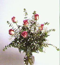 Greece Flowers Greece flower Greece florists :Bi-Color Pink Roses