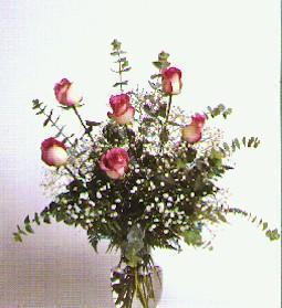 Livraison Fleurs Singapour fleuriste Singapour,fleurs de Singapour Livraison fleurs Singapour:LocalStreets:Bi-Color Pink Roses