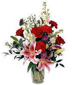 Nauru Flower Nauru Florist  Nauru  Flowers shop Nauru flower delivery online :Sweeter Than Sugar