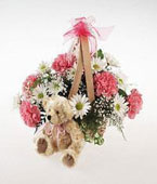 Finland New Baby Finland,:Plush Bear and Flowers (No Carnations)