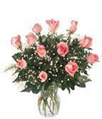 Greece New Baby Greece,:New baby pink roses