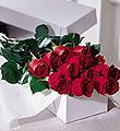 Montreal Valentine's Day Montreal,Québec,:The  One Dozen Boxed Roses