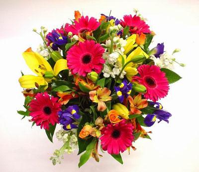 Livraison Fleurs Australie fleuriste Australie,fleurs de Australie Livraison fleurs Australie:LocalStreets:COLOURAMA