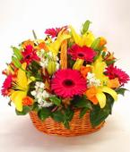 Australia Flower Australia Florist  Australia  Flowers shop Australia flower delivery online  ,:BRIGHT MODERN BASKET