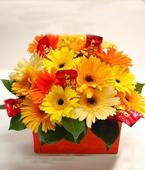 Australia Flower Australia Florist  Australia  Flowers shop Australia flower delivery online  ,:CHERRY BOX