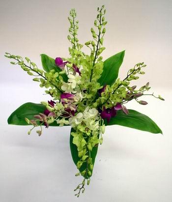 Livraison Fleurs Australie fleuriste Australie,fleurs de Australie Livraison fleurs Australie:LocalStreets:SINGAPORE SENSATION