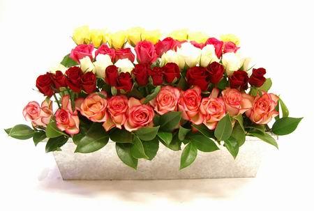 Livraison Fleurs Australie fleuriste Australie,fleurs de Australie Livraison fleurs Australie:LocalStreets:LAYERED TIN