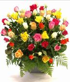 Australia Flower Australia Florist  Australia  Flowers shop Australia flower delivery online  ,:CERAMIC FOYER ARRANGEMENT