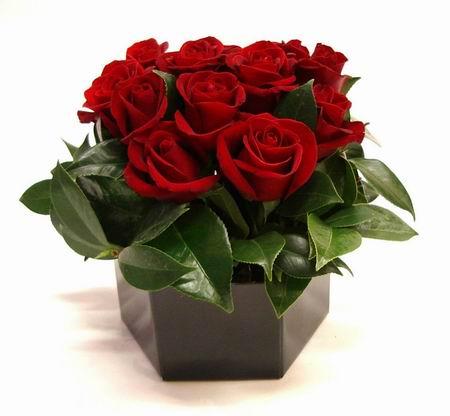 Livraison Fleurs Australie fleuriste Australie,fleurs de Australie Livraison fleurs Australie:LocalStreets:POSY ROSE BOX