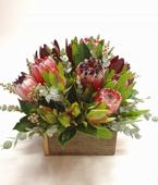 Australia Flower Australia Florist  Australia  Flowers shop Australia flower delivery online  ,:AUSTRALIANA