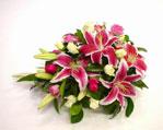 Australia Flower Australia Florist  Australia  Flowers shop Australia flower delivery online  ,:SOFT PINK SPRAY