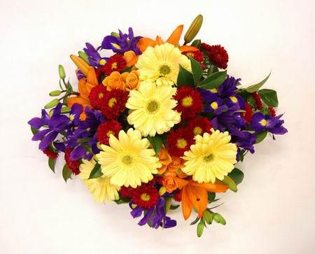 Livraison Fleurs Australie fleuriste Australie,fleurs de Australie Livraison fleurs Australie:LocalStreets:BOARDROOM TABLE