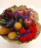 Australia Flower Australia Florist  Australia  Flowers shop Australia flower delivery online  ,:GROUPED NATIVES