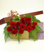 New Zealand Flower New Zealand Florist  New Zealand  Flowers shop New Zealand flower delivery online  :12 Valentine's Roses