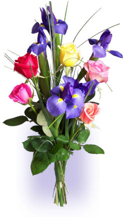 Barely Bouquet Roses & Irises
