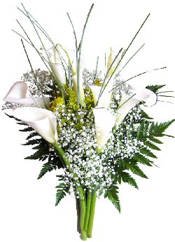 Send flowers online international -LocalStreets- Flower delivery,florists:Calla Sympathy Bouquet