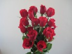 Simply Red Roses Plus 6 Free