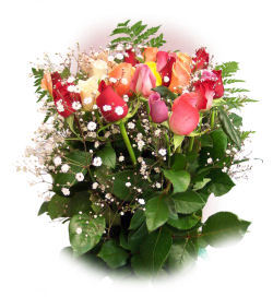 Send flowers online international -LocalStreets- Flower delivery,florists:Rose Bouquet Two Dozen Long