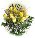 US Arranged Roses US,,:Single Color Rose Bouquet Dozen Long