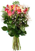 US Arranged Roses US,,:Rose Bouquet Two Dozen Fancy