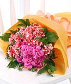 fleurs Singapour Livraison fleurs Singapour achat fleurs Singapour fleuriste Singapour en ligne, :Classic Carnations