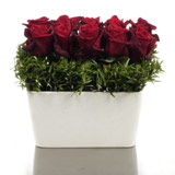 New Zealand Flower New Zealand Florist  New Zealand  Flowers shop New Zealand flower delivery online  :Polystone Vase of Red Roses