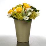 New Zealand Flower New Zealand Florist  New Zealand  Flowers shop New Zealand flower delivery online  :Lemons and Limes Terracotta Pot