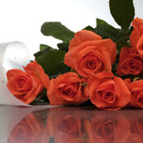 New Zealand Flower New Zealand Florist  New Zealand  Flowers shop New Zealand flower delivery online  :Orange Roses in a special wrap
