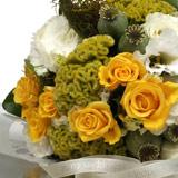 New Zealand Flower New Zealand Florist  New Zealand  Flowers shop New Zealand flower delivery online  :Lemons and Limes Posy
