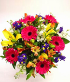 New Zealand Flower New Zealand Florist  New Zealand  Flowers shop New Zealand flower delivery online  :COLOURAMA