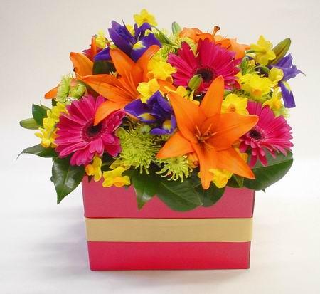 Livraison Fleurs Nouvelle-Zélande fleuriste Nouvelle-Zélande,fleurs de Nouvelle-Zélande Livraison fleurs Nouvelle-Zélande:LocalStreets:FRESH FUNKY BOX