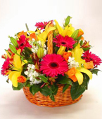 New Zealand Flower New Zealand Florist  New Zealand  Flowers shop New Zealand flower delivery online  :BRIGHT MODERN BASKET