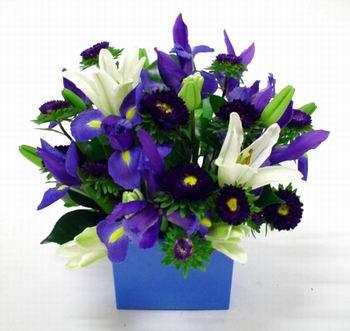 Livraison Fleurs Nouvelle-Zélande fleuriste Nouvelle-Zélande,fleurs de Nouvelle-Zélande Livraison fleurs Nouvelle-Zélande:LocalStreets:BABY BOY BOX