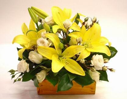 Livraison Fleurs Nouvelle-Zélande fleuriste Nouvelle-Zélande,fleurs de Nouvelle-Zélande Livraison fleurs Nouvelle-Zélande:LocalStreets:BEAUTIFUL BABY