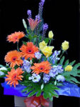 Australia Flower Australia Florist  Australia  Flowers shop Australia flower delivery online  ,:Bright and Beautiful
