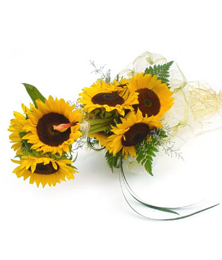 Thailand Flower Thailand Florist  Thailand  Flowers shop Thailand flower delivery online  :B004