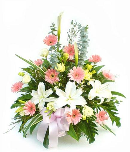 Thailand Flower Thailand Florist  Thailand  Flowers shop Thailand flower delivery online  :BA006