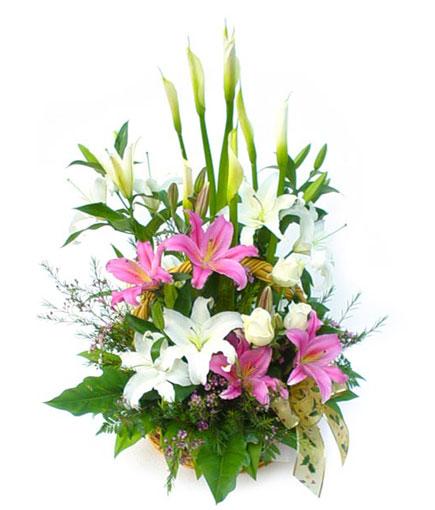 Thailand Flower Thailand Florist  Thailand  Flowers shop Thailand flower delivery online  :BA007