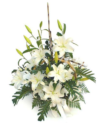 Livraison Fleurs Thaïlande fleuriste Thaïlande,fleurs de Thaïlande Livraison fleurs Thaïlande:LocalStreets:BA008