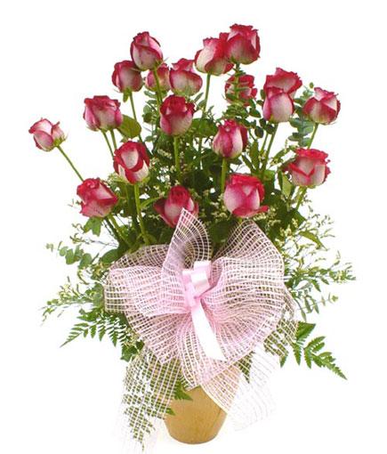Livraison Fleurs Thaïlande fleuriste Thaïlande,fleurs de Thaïlande Livraison fleurs Thaïlande:LocalStreets:V001