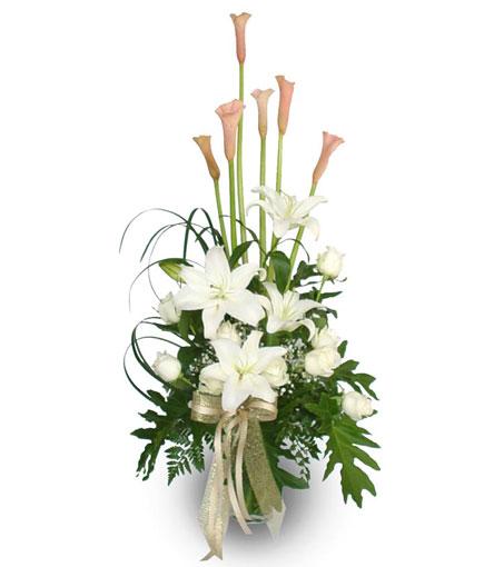 Thailand Flower Thailand Florist  Thailand  Flowers shop Thailand flower delivery online  :V003