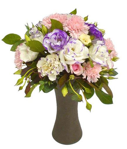 Thailand Flower Thailand Florist  Thailand  Flowers shop Thailand flower delivery online  :V017