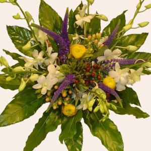 Livraison Fleurs Portugal fleuriste Portugal,fleurs de Portugal Livraison fleurs Portugal:LocalStreets:Tropical Orchid Bouquet (Normal)