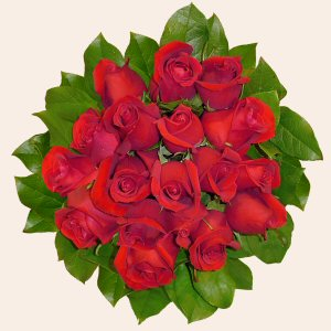 Portugal Flower Portugal Florist  Portugal  Flowers shop Portugal flower delivery online  :Red Roses Bouquet (18 Roses)