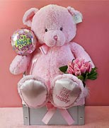 HK New Baby HK,:My First Pink Teddy Bear